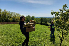 Projekt Vrtovi susreta - slika 1