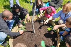 Projekt Vrtovi susreta - slika 8