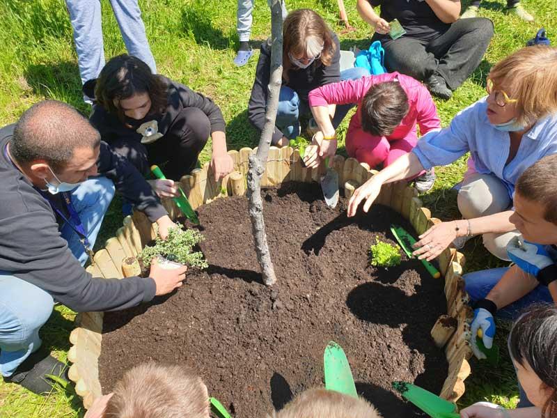 Projekt Vrtovi susreta